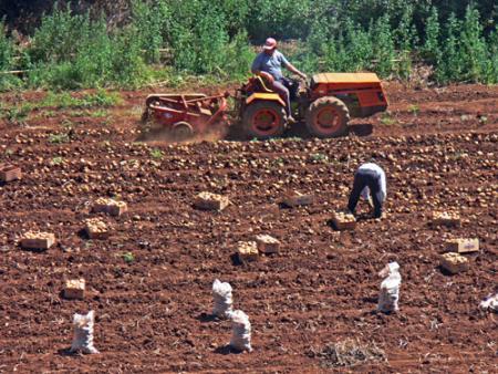 Agricultores en huelga